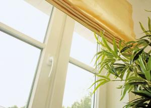 Kunststofffenster mit Jalousine und Zimmerpflanze